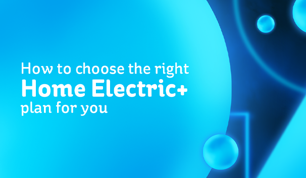 Electric Ireland Home Electric+ price