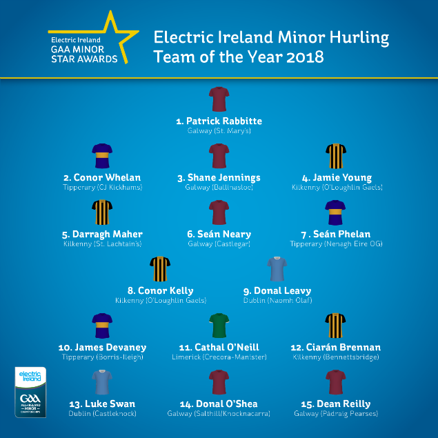FINAL Hurling Team of The Year 2018 635